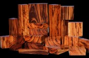 Information on wood Tigerwood